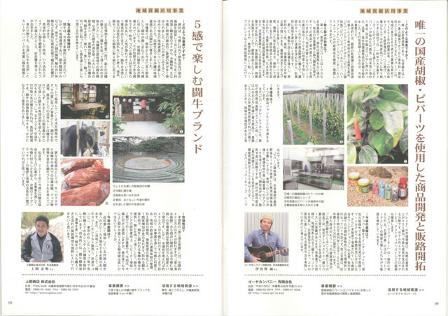 「沖縄プロデュース2015」 ライター