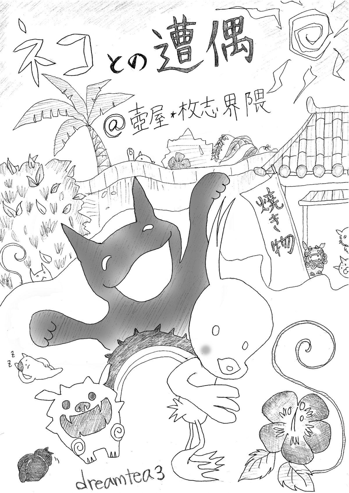 ネコとの遭遇@壺屋・牧志界隈